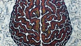 Brain1Develop